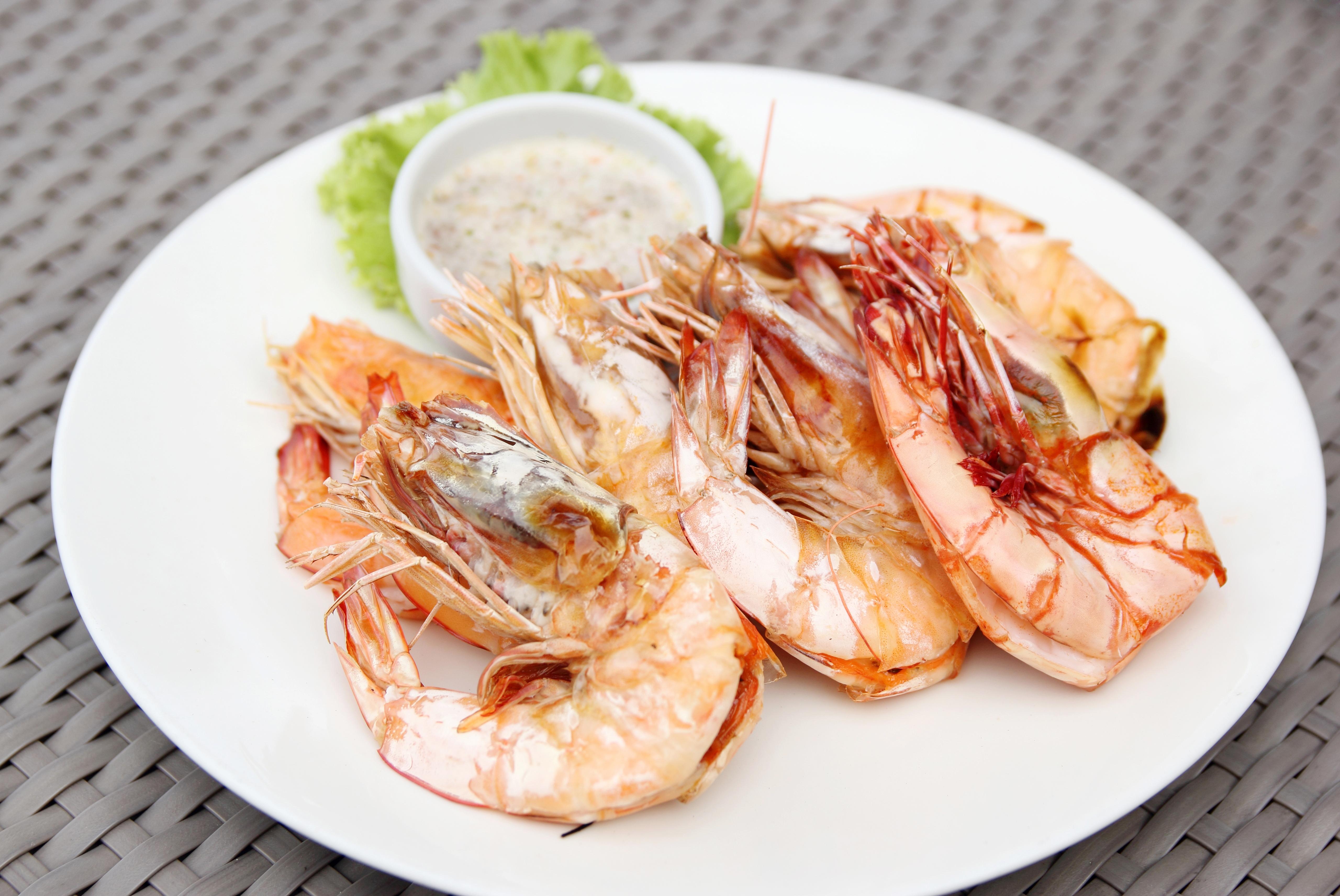 Garnelen Shrimps Unterschied